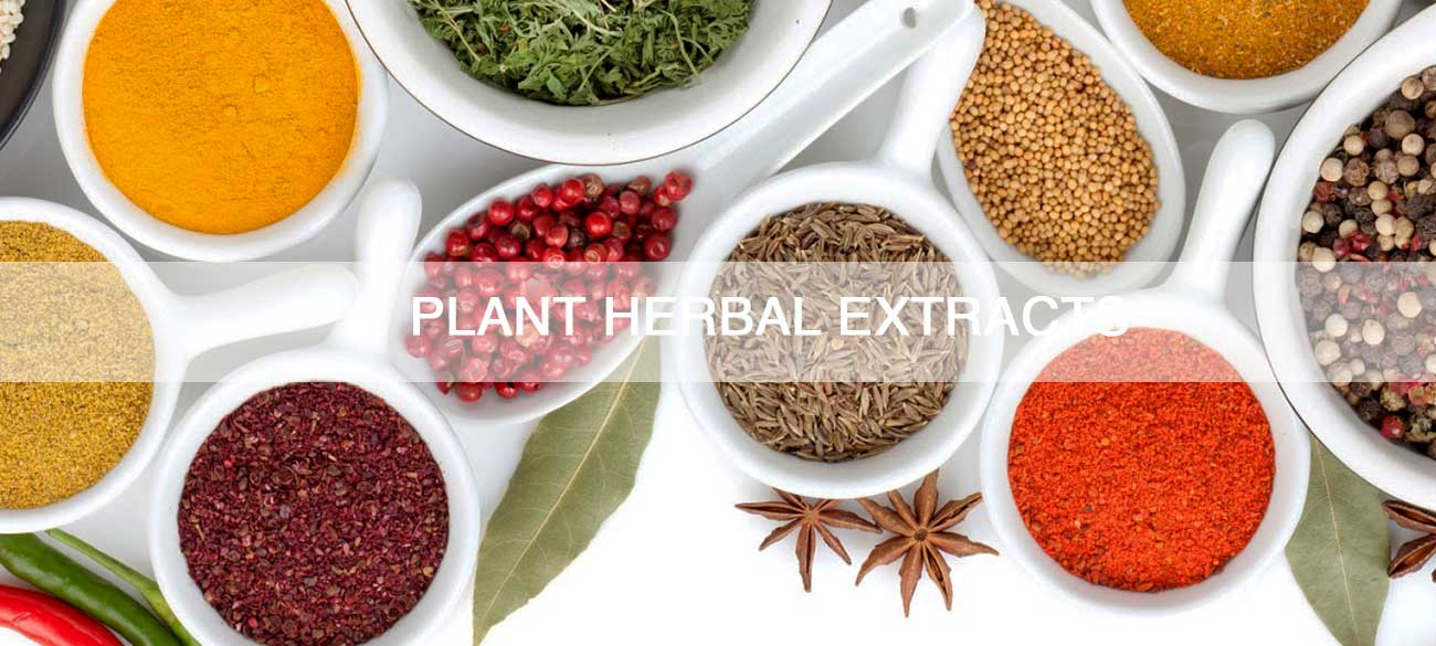 PLANT-HERBAL-EXTRACTS
