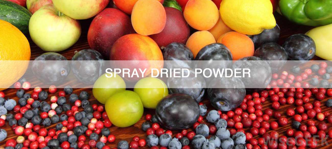 SPRAY-DRIED-POWDER